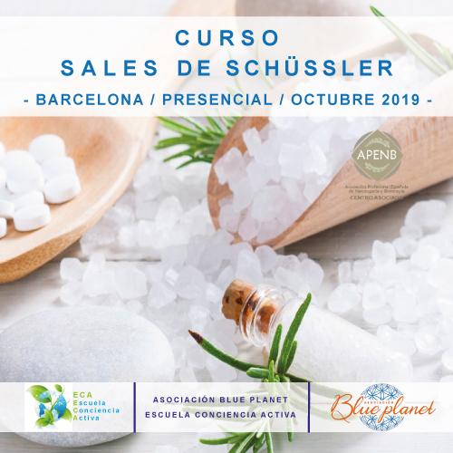Curso Sales de Schüssler - Octubre 2019
